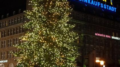 Weihnachtsbaum Kaufen Essen.Wo Essener Ihren Weihnachtsbaum Selbst Sägen Können Waz De Essen