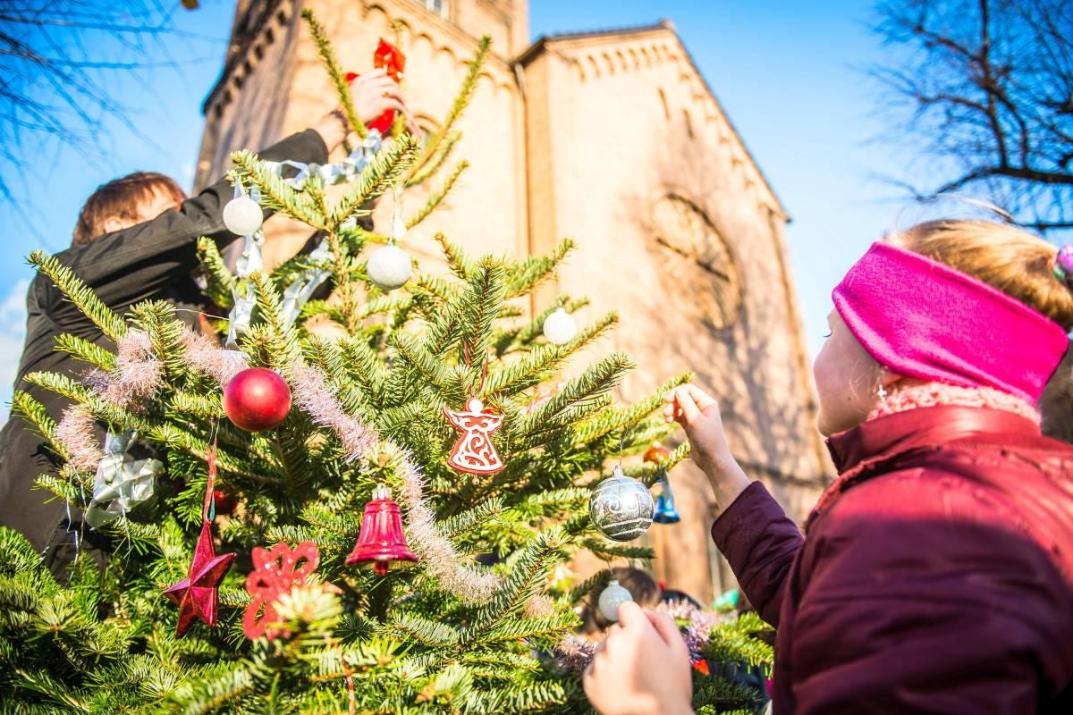 Dortmund Weihnachtsbaum Kaufen.O Tannenbaum Waz De Best Of