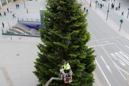 Weihnachtsbaum Kaufen Essen.Essen Verzichtet Auf Riesen Tanne Beim Weihnachtsmarkt Waz De Essen