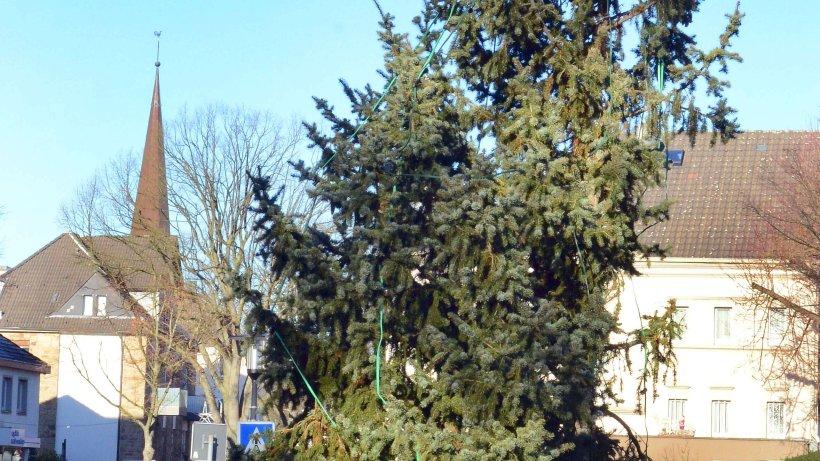 der schiefe weihnachtsbaum aus heisingen wird bald. Black Bedroom Furniture Sets. Home Design Ideas
