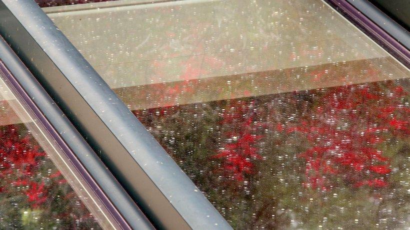Sterkrader r tseln ber klebrige flecken an auto und for Fensterscheibe bestellen
