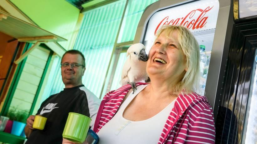 In Bochum Krachzen Jetzt Papageien Bei Kaffee Und Kuchen Waz De