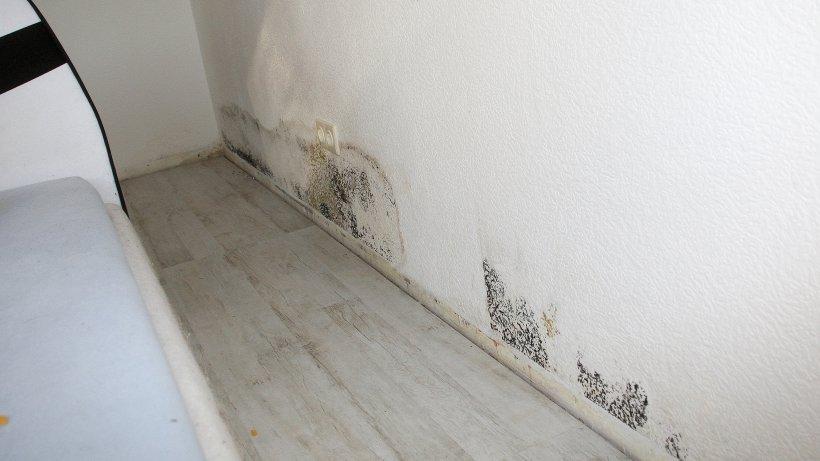 neue wohnung mit altem schimmel in oberhausen bergeben oberhausen. Black Bedroom Furniture Sets. Home Design Ideas
