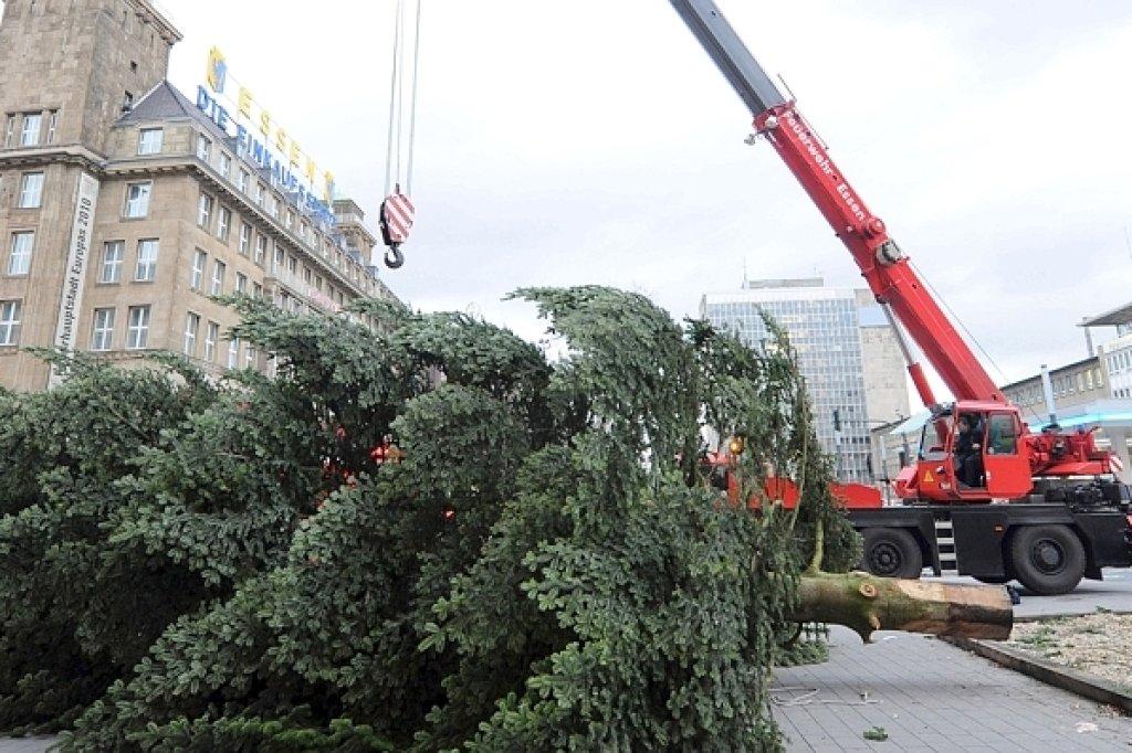 Weihnachtsbaum abholung essen 2018