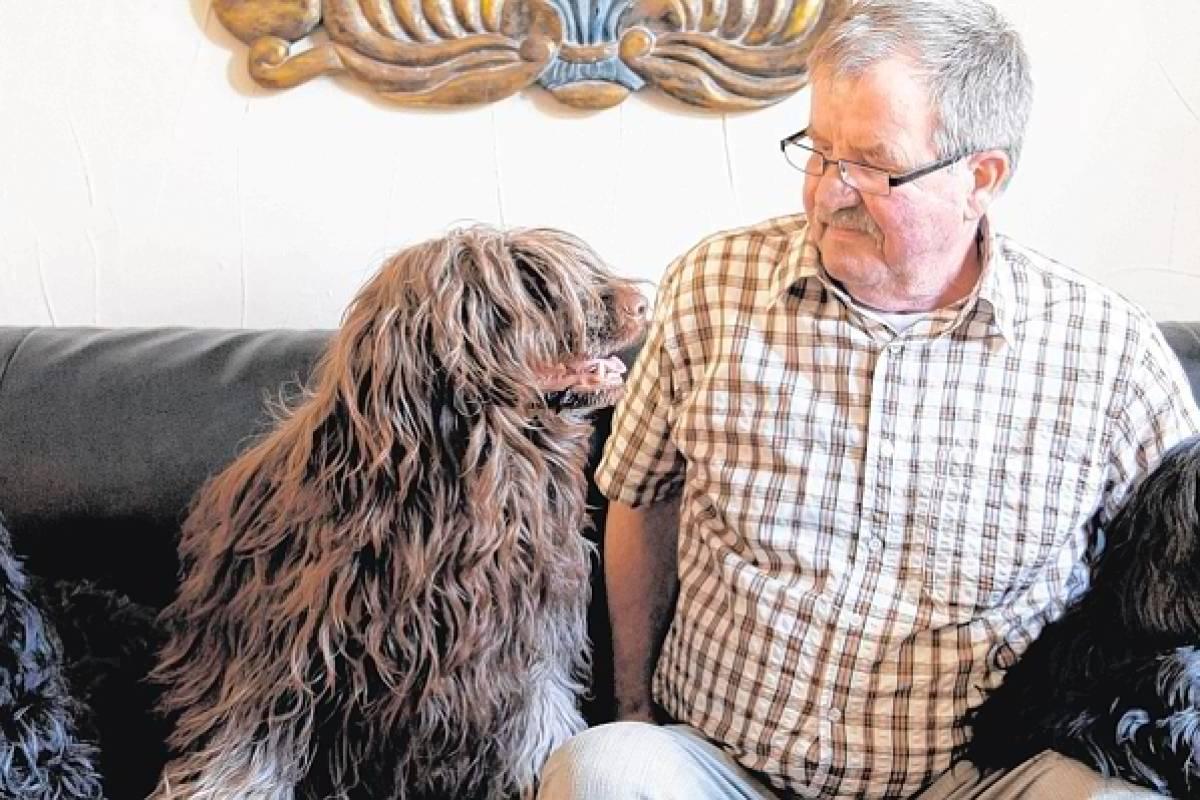 Charmante Strubbel-Hunde mit Seltenheitswert | waz de