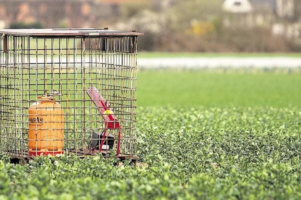 Landwirt verteidigt Schussanlagen im Duisburger Süden | waz.de | Süd