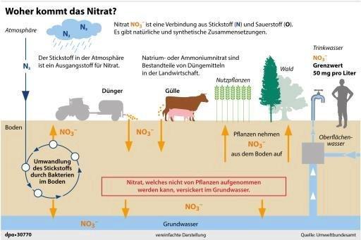 Erklärgrafik zum Vorkommen von Nitrat.