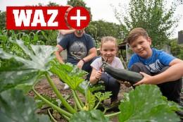 Lange Wartelisten für Kleingärten in Duisburg seit Corona
