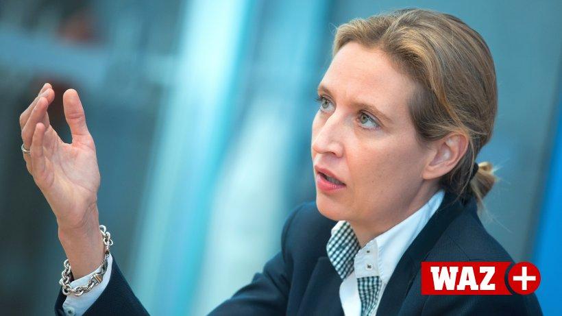 """""""Nazi-Schlampe: AfD-Frau Weidel unterliegt vor Gericht"""
