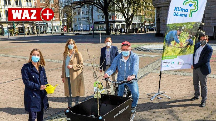 Umweltschutz-Patenaktion-Klimab-ume-sollen-in-Gladbeck-Fr-chte-tragen