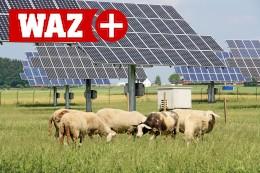 Solarpark-Pläne an der A 31 in Gladbeck auf der Zielgeraden