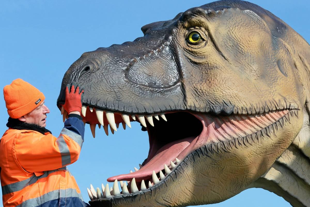 Dino City Bochum Karte.Bochum Wird Im Sommer Zur Stadt Der Dinosaurier Waz De Bochum