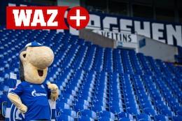 Bayern und Schalke: Das Flutopfer-Benefizspiel hilft allen
