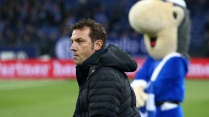 Schalke Tannenbaum.Es Begann Alles Unterm Schalker Tannenbaum Waz De S04