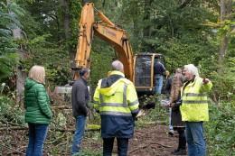 Umwelt: Für Renaturierung: dutzende Bäume am Dickelsbach gefällt