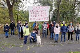 Umwelt: Grüne fordern: Baumfällungen am Dickelsbach sofort stoppen